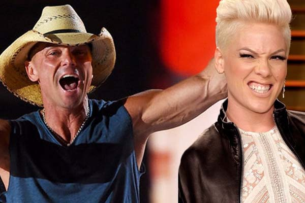 Turned Pop Star P!NK Country