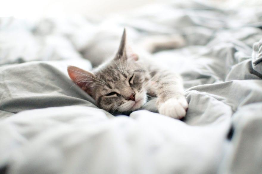 Sleeping On You