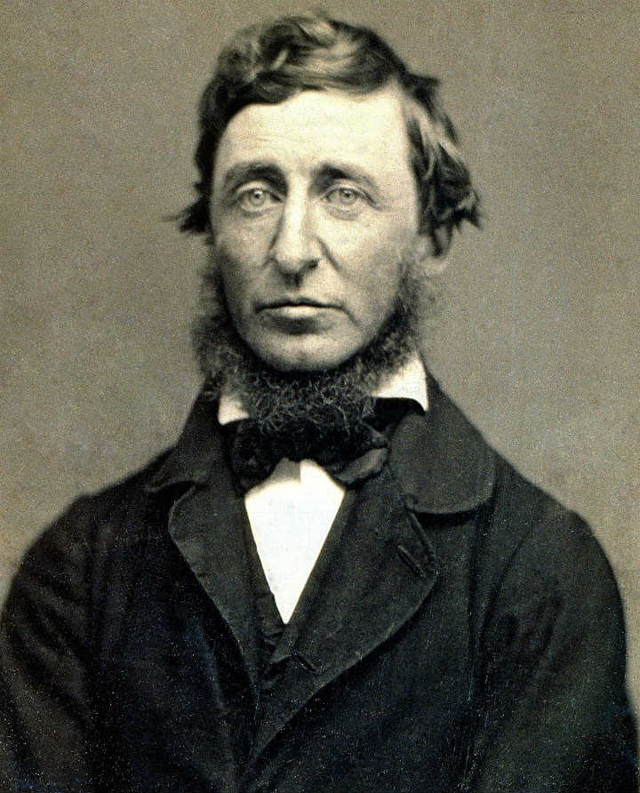 Not Like Thoreau