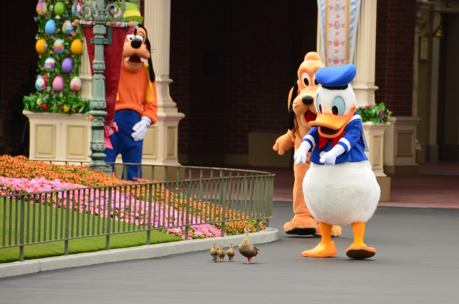 Donald Duck And Family