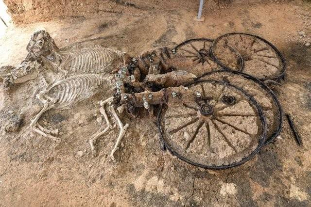 Archaeologists Found A Thracian Carriage With Two Horses Buried Upright
