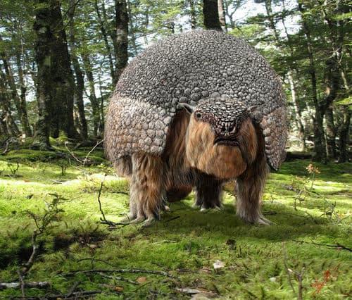 Meet The Glyptodons
