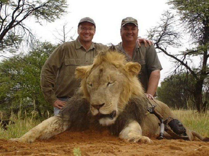 Walter Palmer And Cecil