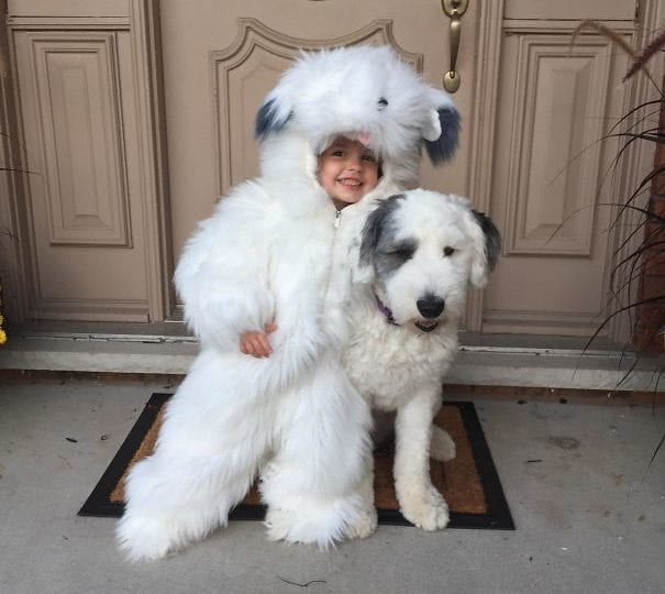 Her Sheepdog Costume