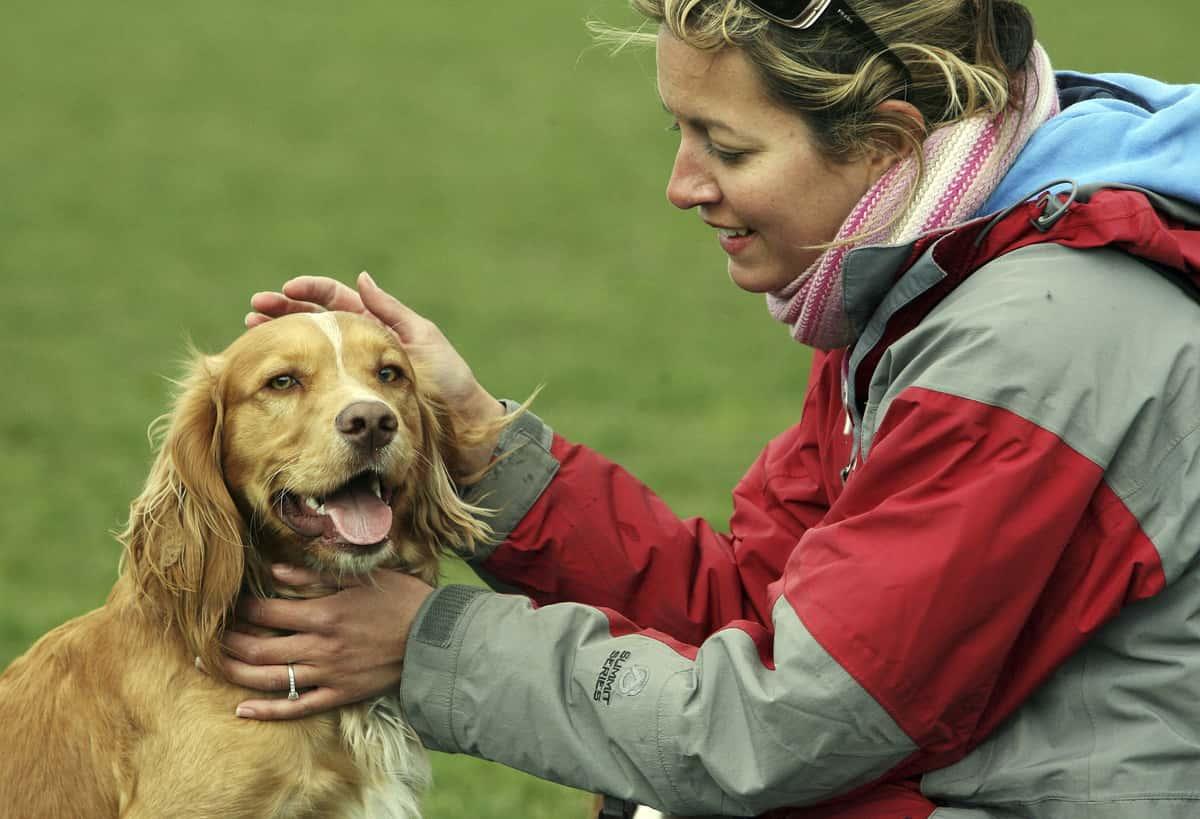 Save A Dog's Life