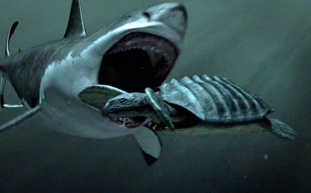 Fake Shark Week Documentary