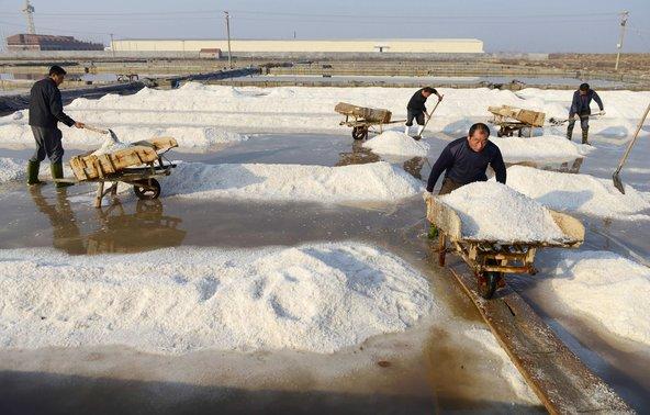 Industrial-Style Salt