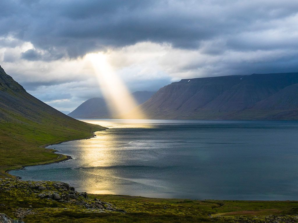 A Bright Light
