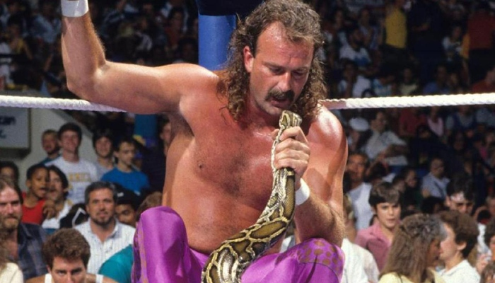 "Jake ""The Snake"" Roberts (1974-2008)"