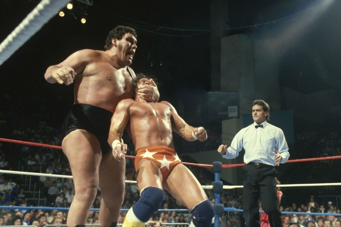Andre the Giant (1966-1993)